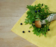 Blueberry and mushroom. Forest plants. The blueberry bushes and a small white mushroom lying on yellow cloth napkin and an old wooden surface Royalty Free Stock Photo