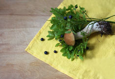 Blueberry and mushroom. Forest plants. The blueberry bushes and a small white mushroom lying on yellow cloth napkin and an old wooden surface Stock Images