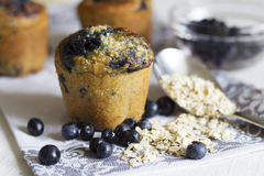Blueberry oatmeal muffins. Stock Photography