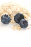 Blueberry oats Royalty Free Stock Photo