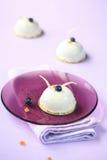 Blueberry and Orange Mousse Cakes Royalty Free Stock Photo