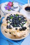 Blueberry pavlova cake Royalty Free Stock Photo