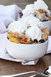 Blueberry Peach Cobbler and Ice Cream stock photography