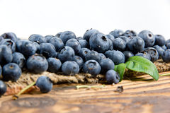 Blueberry. Photo of blueberry with leaves and white space for text Stock Photography