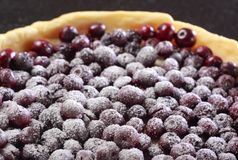 Blueberry pie. Close up of blueberry pie with powdered sugar Royalty Free Stock Photos