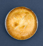 Blueberry Pie. With Blue Background royalty free stock images