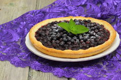 Blueberry pie. Closeup of a beautiful homemade blueberry pie. Shallow DOF royalty free stock photography