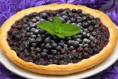 Blueberry pie. Closeup of a beautiful homemade blueberry pie. Shallow DOF royalty free stock photos
