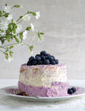 Blueberry pie with cream cheese and coconut flake Stock Photos