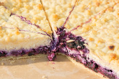 Blueberry Pie. Stock Photography