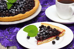 Blueberry pie. Slice of blueberry pie with mint Shallow DOF royalty free stock images