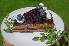 Blueberry pie slice on a plate Stock Images