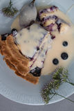 Blueberry pie. Slices on plate closeup from above studio isolated Stock Photography
