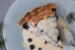 Blueberry pie. Slices on plate closeup from above studio isolated Stock Photo
