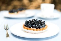 Blueberry Pie Tart on White Plate Royalty Free Stock Images