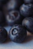 Blueberry pile macro Royalty Free Stock Photo