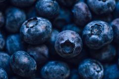 Blueberry pile. Macro shot with selective focus Stock Photo