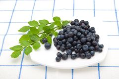 Blueberry on a plate Stock Photos