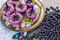Blueberry Popsicles Stock Photography
