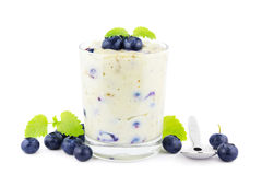 Blueberry pudding Stock Photography