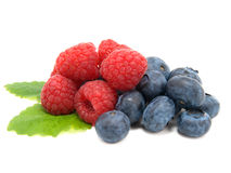 Blueberry and raspberries. On white background Stock Photography