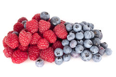Blueberry and raspberry. Fresh isolated Stock Photography