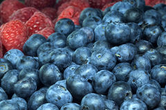 Blueberry and raspberry Royalty Free Stock Photo