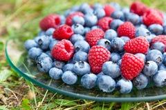 Blueberry with raspberry macro photo.  Stock Photography