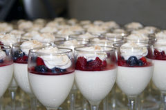 Blueberry, Raspberry Parfait Stock Photography
