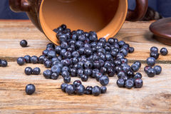 Blueberry or raspberry scattered from pot over wooden background. Health and diet concept. Copy space Royalty Free Stock Photos