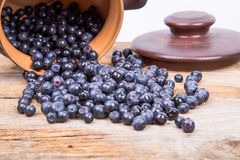 Blueberry or raspberry scattered from pot over wooden background. Health and diet concept. Copy space Royalty Free Stock Photography