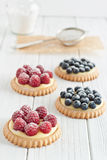 Blueberry and raspberry tartlets Royalty Free Stock Image