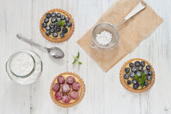 Blueberry and raspberry tartlets Stock Images