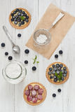Blueberry and raspberry tartlets. With icing sugar Royalty Free Stock Images