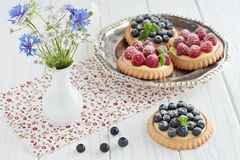 Blueberry and raspberry tartlets Royalty Free Stock Photography