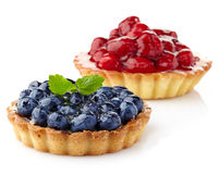 Blueberry and raspberry tarts Stock Images
