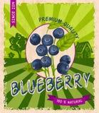 Blueberry retro poster Stock Photo