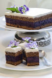 Blueberry's pie bars with ricotta cream Stock Photos