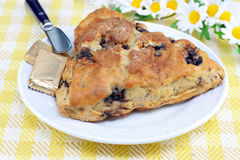 Blueberry Scone. One blueberry scone on a plate with pats of butter Royalty Free Stock Images
