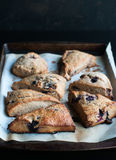 Blueberry Scones Stock Images