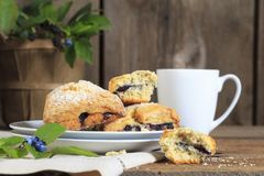 Blueberry Scones and Cup of Coffee royalty free stock images