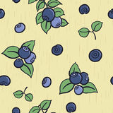 Blueberry seamless background Stock Photo