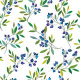 Blueberry seamless graphic pattern. Royalty Free Stock Image