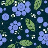 Blueberry seamless pattern. Black currant with leaves and flowers on shabby background. Original simple flat illustration. Shabby style stock illustration