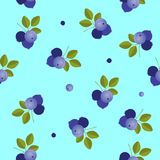 Blueberry seamless pattern on the blue background.  vector illustration