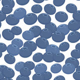 Blueberry seamless pattern blue Fresh juicy berries on white background. Vector Stock Images