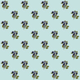 Blueberry seamless pattern. Seamless pattern with branches of blueberries on blue background Stock Image