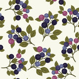 Blueberry seamless pattern. Seamless pattern with branches of blueberries and green leaves on light gray background Stock Photography