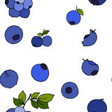 Blueberry seamless pattern by hand drawing on white backgrounds. Illustrations Royalty Free Stock Photos
