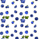 Blueberry seamless pattern by hand drawing on white backgrounds. Illustrations Royalty Free Stock Images